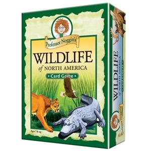 Professor Noggins Wildlife North America