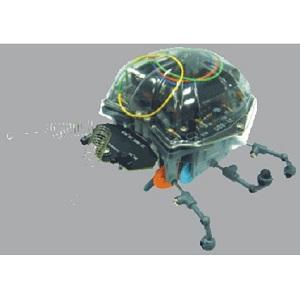 ladybug robot kit 2