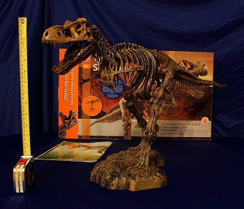 T-Rex Skeleton Complete small 6683