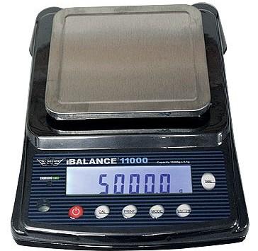iBalance 11000