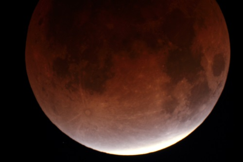 "Lunar Eclipse from 2011, taken through a 203mm (8"") telescope."